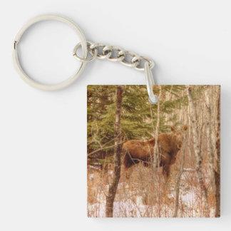Moose Calf Keychain