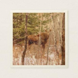 Moose Calf Paper Napkin
