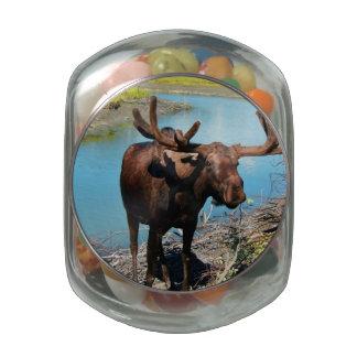 Moose Glass Candy Jars