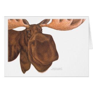 moose_card greeting cards