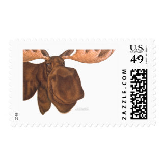 moose_card stamps