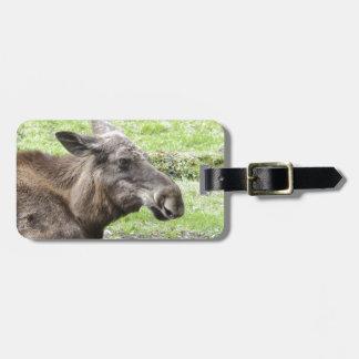Moose Cow Profile Shot Bag Tag
