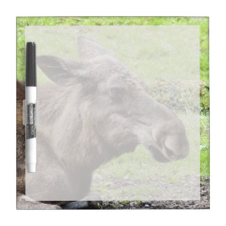Moose Cow Profile Shot Dry Erase Board