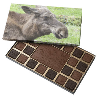Moose Cow Profile Shot 45 Piece Assorted Chocolate Box