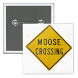 Moose Crossing Buttons