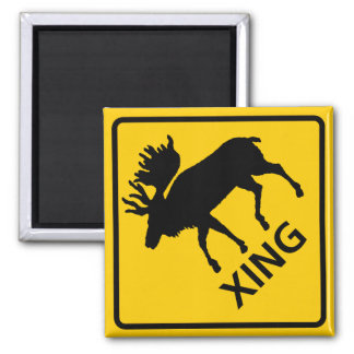 Moose Crossing Highway Sign 2 Inch Square Magnet