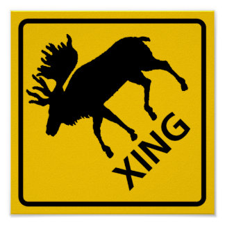 Moose Crossing Highway Sign Poster