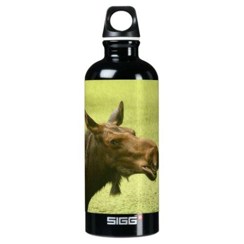 Moose Did Someone Say Cake Aluminum Water Bottle