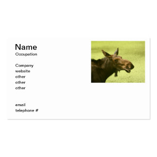 Moose Did Someone Say Cake Business Card
