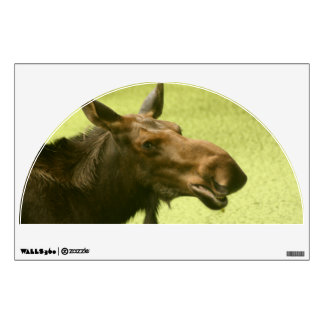 Moose Did Someone Say Cake wall graphics