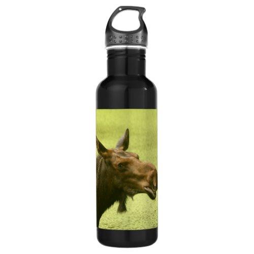 Moose Did Someone Say Cake Water Bottle