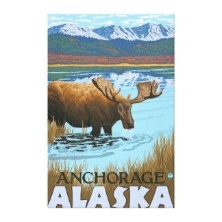 Moose Drinking at Lake - Anchorage, Alaska Canvas Print
