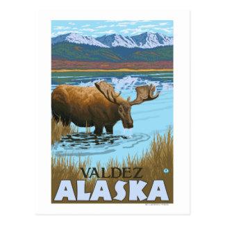 Moose Drinking at Lake - Valdez Alaska Postcard