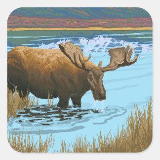 Moose Drinking at Lake - Yellowstone National Square Sticker