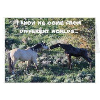 Moose Encounter Greeting Card