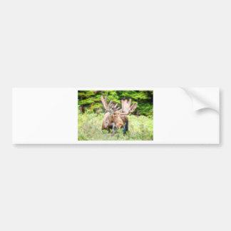 Moose Glow Bumper Sticker