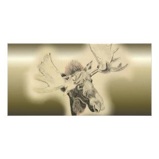 Moose Head Sketch Card