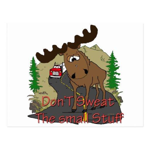 Moose humor postcard