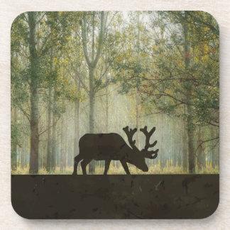 Moose in Forest Illustration Coaster