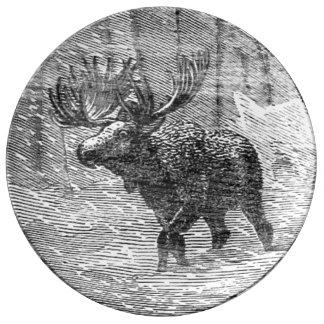 Moose in Snow Emblem Porcelain Plate