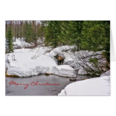 Moose In Snow Greeting Card at Zazzle