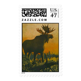 MOOSE IN THE LOWLANDS @ SUNSET ~ POSTAGE STAMP