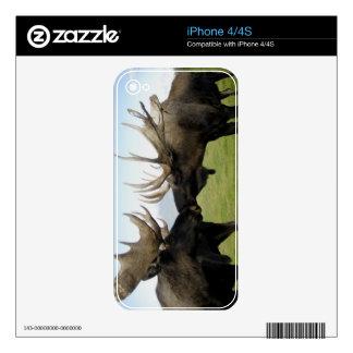 Moose iPhone 4 Decal