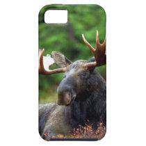 Moose iPhone SE/5/5s Case