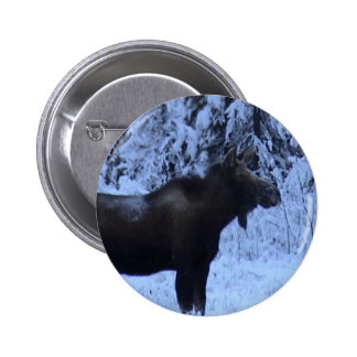 Moose loose in the snow button