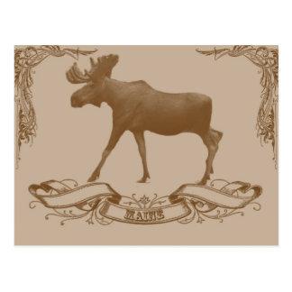 moose maine postcard