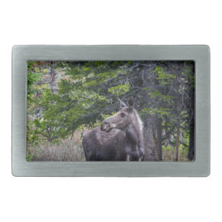 Moose Mother Belt Buckle