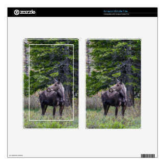Moose Mother Decals For Kindle Fire