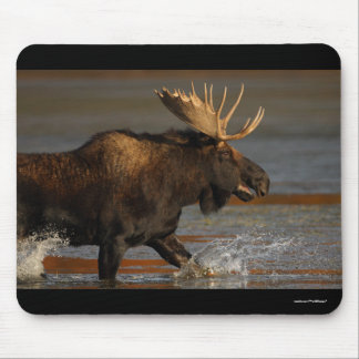 moose mouse pad