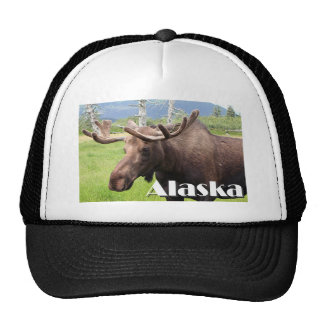 Moose near Anchorage, Alaska, USA (caption) Trucker Hat