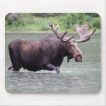 Moose on a Mission Mouse Pad