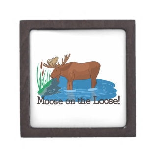 Moose on The Loose Jewelry Box