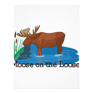 Moose on The Loose Letterhead