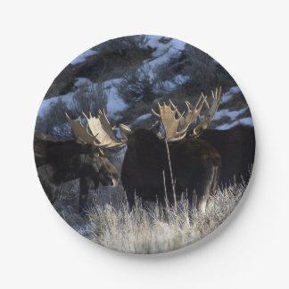 Moose pack paper plate