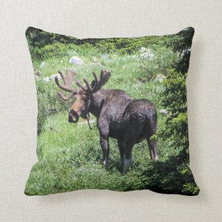 Moose Pillow