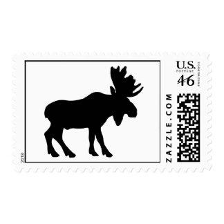Moose Postage Stamp