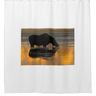 Moose Reflection Shower Curtain