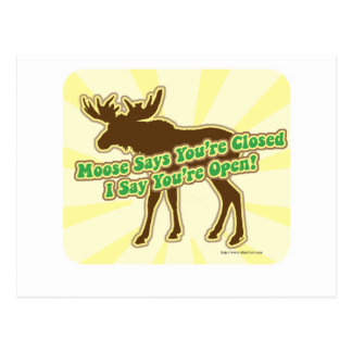 Moose Says You Are Closed! Postcard