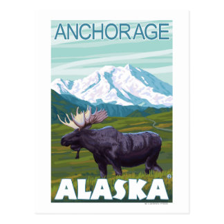 Moose Scene - Anchorage, Alaska Postcard