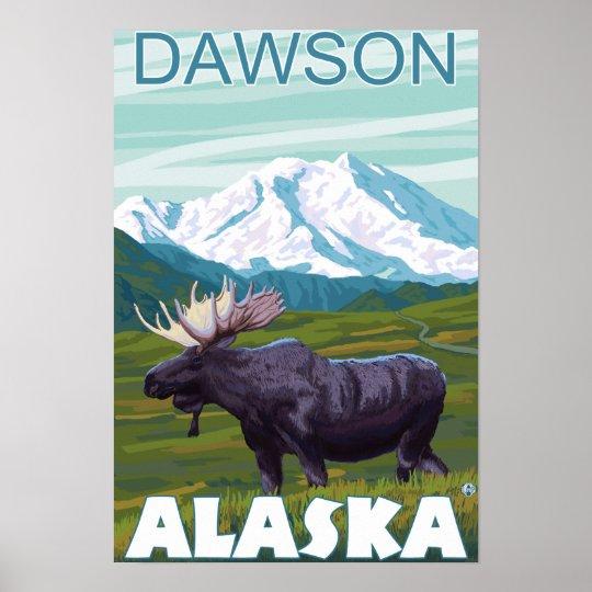 Moose Scene - Dawson, Alaska Poster