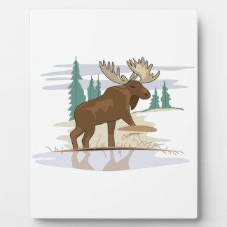 Moose Scene Plaque