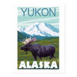 Moose Scene - Yukon, Alaska Postcard