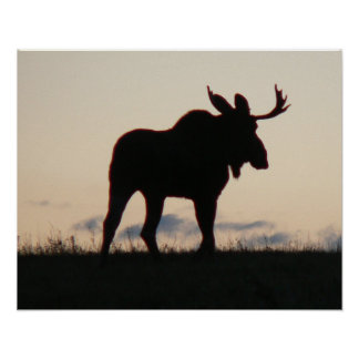 moose silouette poster