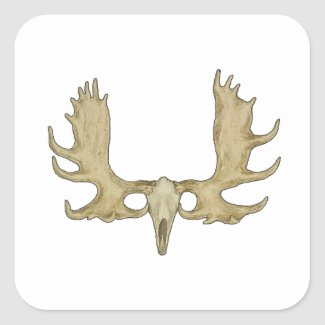 Moose Skull - Antlers Illustration Square Sticker