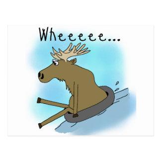 Moose Snow  Tubing Postcard