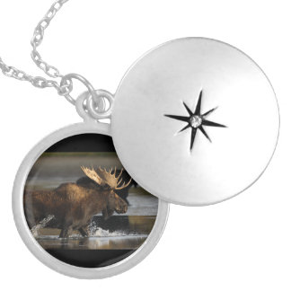 moose splashing in the water silver plated necklace
